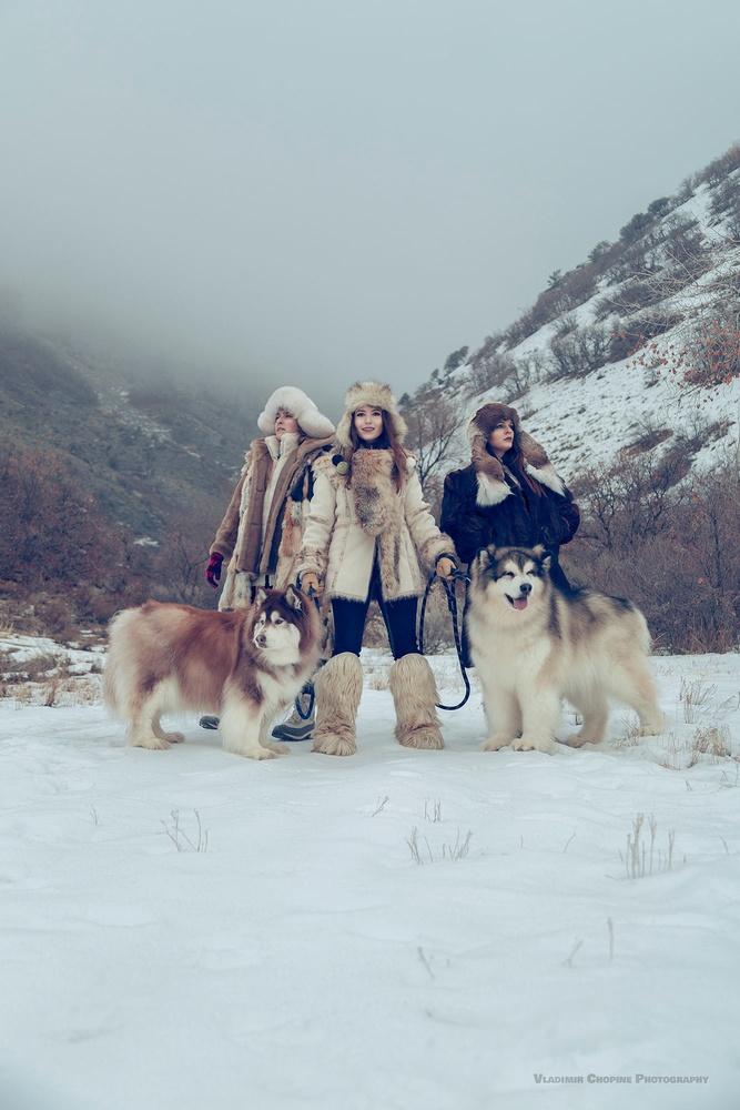 Fur, Fluff, Fun by Vladimir Chopine