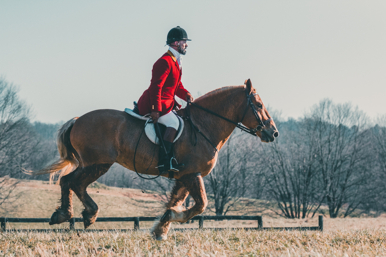 Virginia Hunt Master by Cameron Kaseman