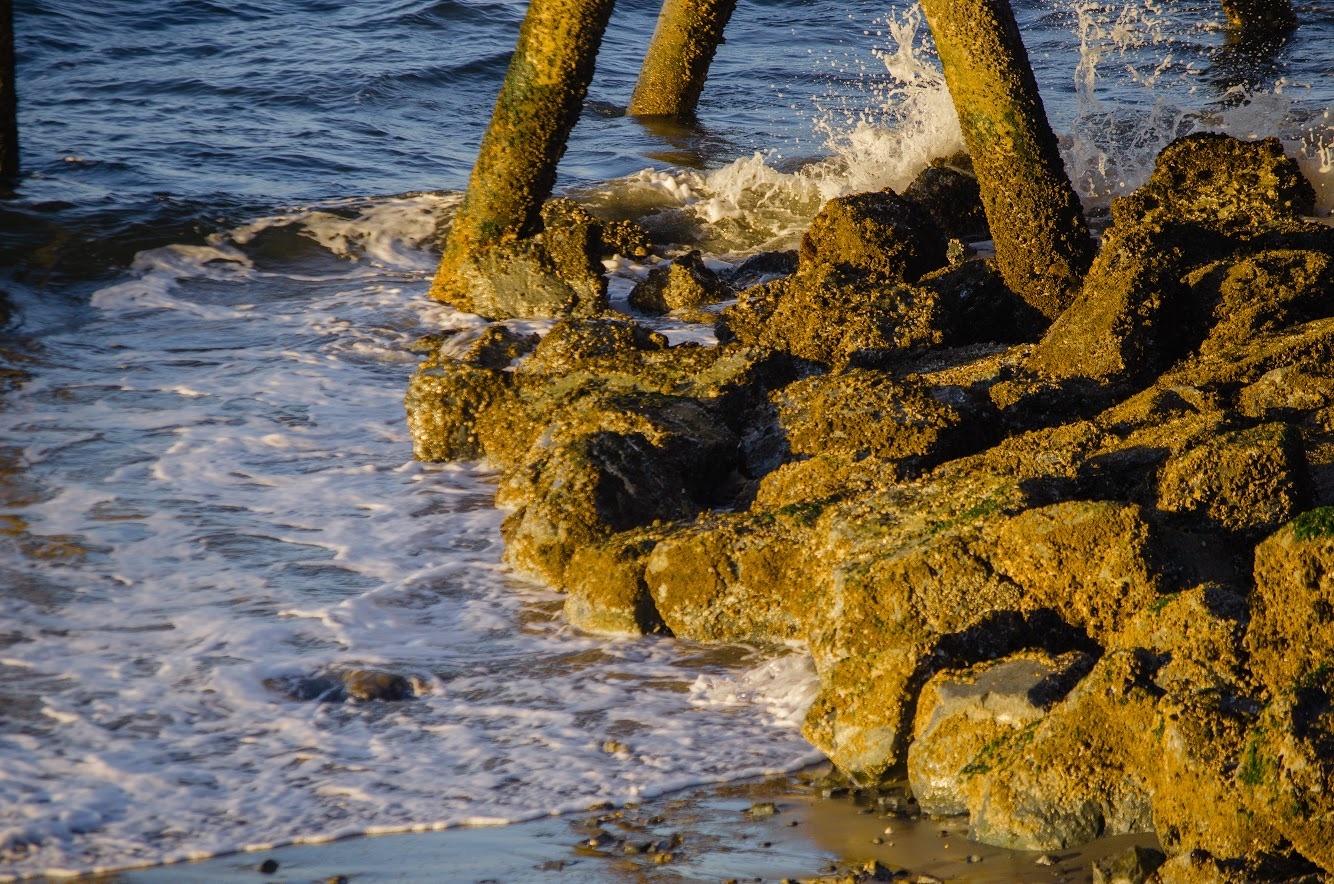 Ocean waves by Kolby Mccue