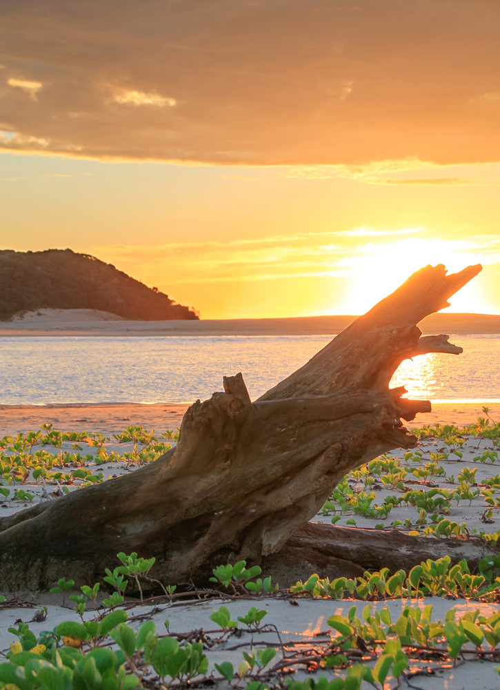 Sunrise at the Kei River mouth, South Africa by Gareth Yearsley