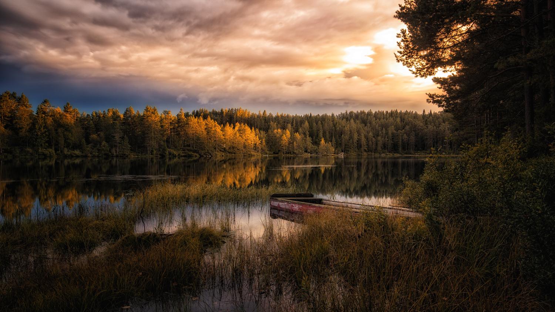 Autumn by Bjørn - Audun Myhre