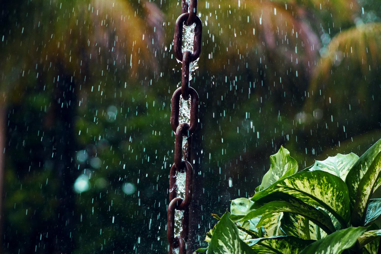 Feel the rain! by Denisson Contardi
