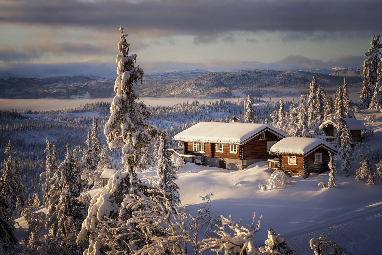 Morning Glory by Rickard Eriksson