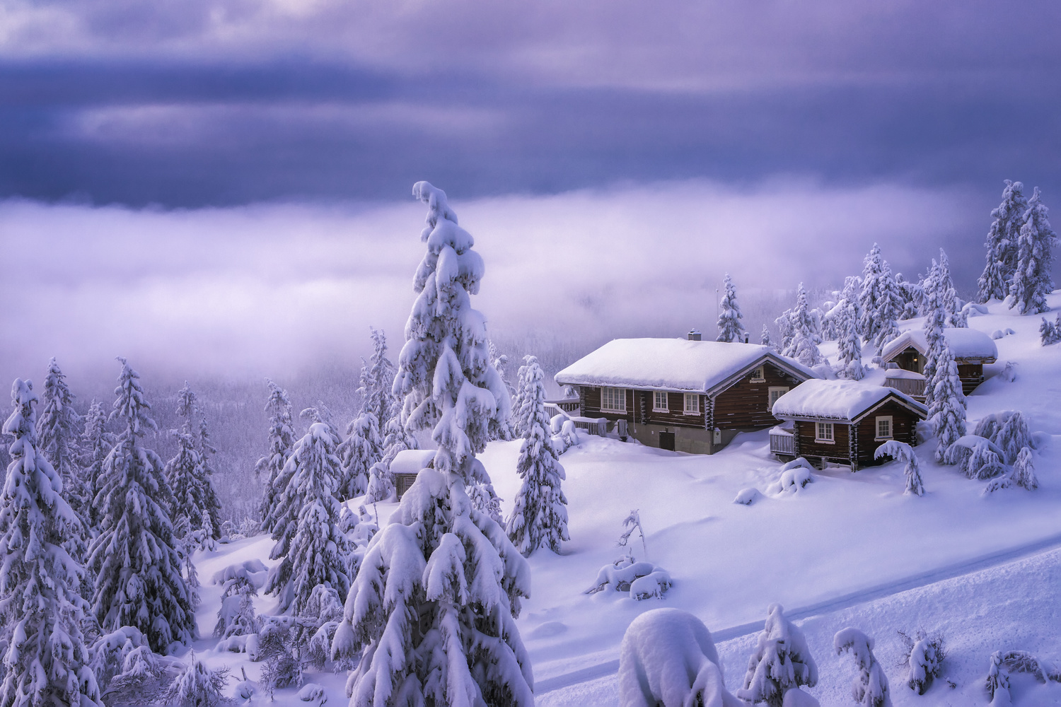 It's a winterful life by Rickard Eriksson