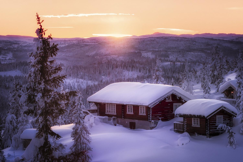Golden by Rickard Eriksson