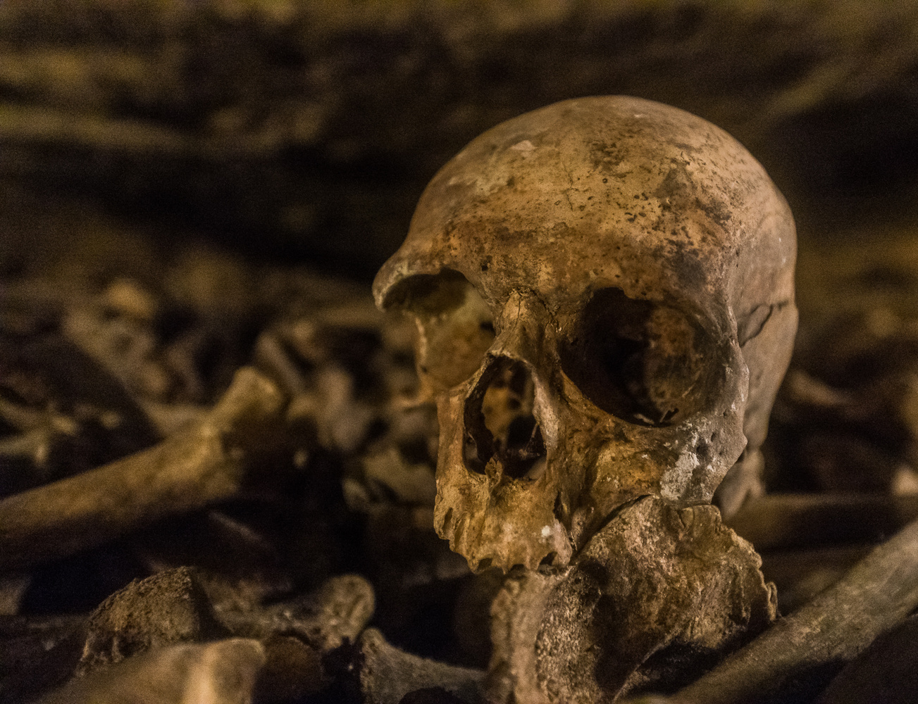 Paris Catacombs by Spencer Clark