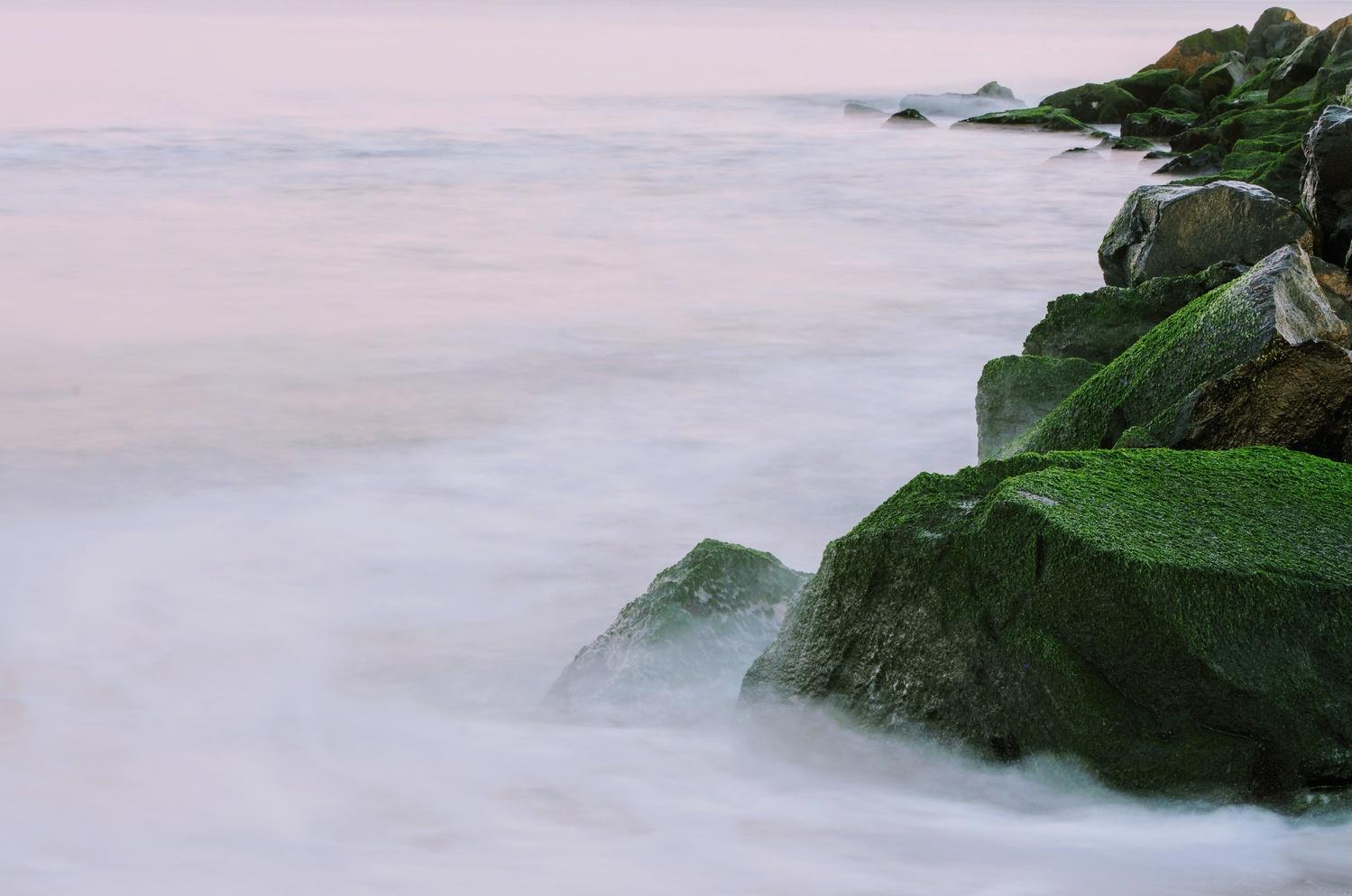 Green Turmoil by Reed Page