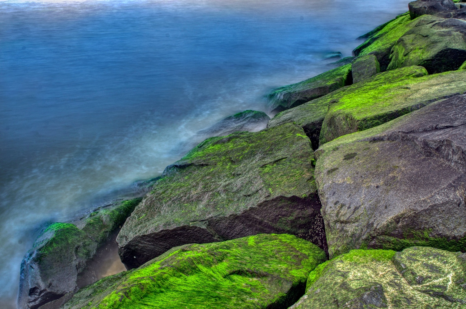 Green Space at The Beach by Reed Page