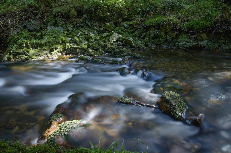 River by Ondřej Pollak