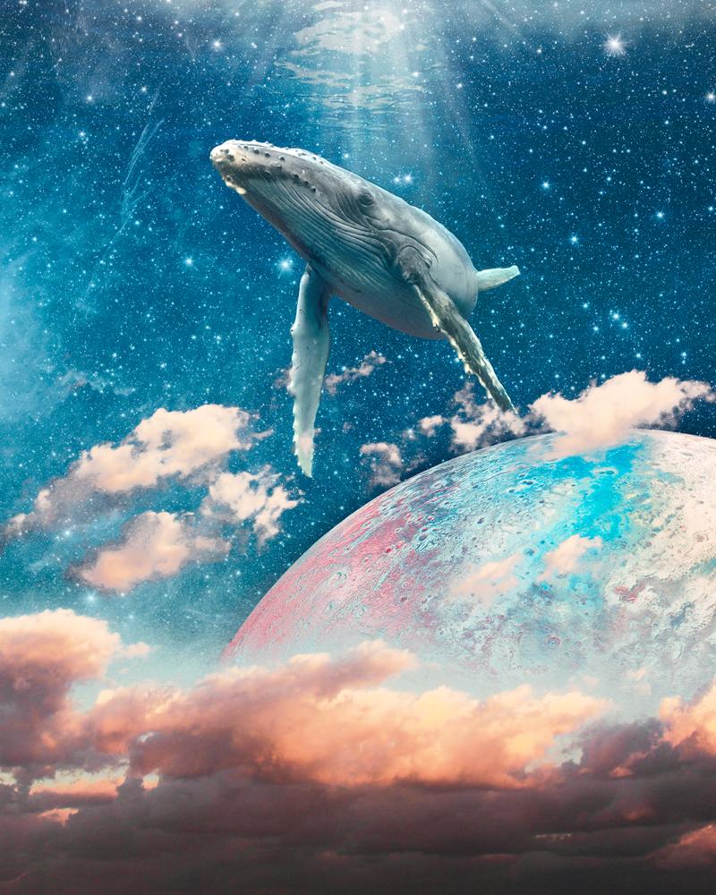 Galactic Whale. by Abdulaziz Albosefi