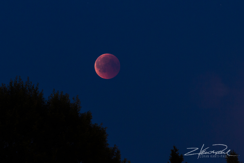 Blood Moon Eclipse by Z K-P