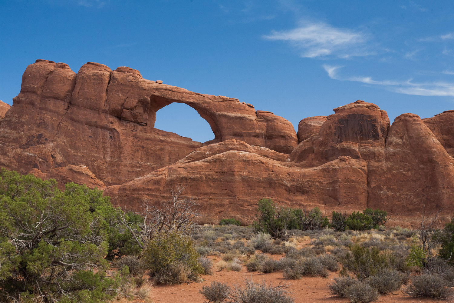 The Arch by Jakeb Miller