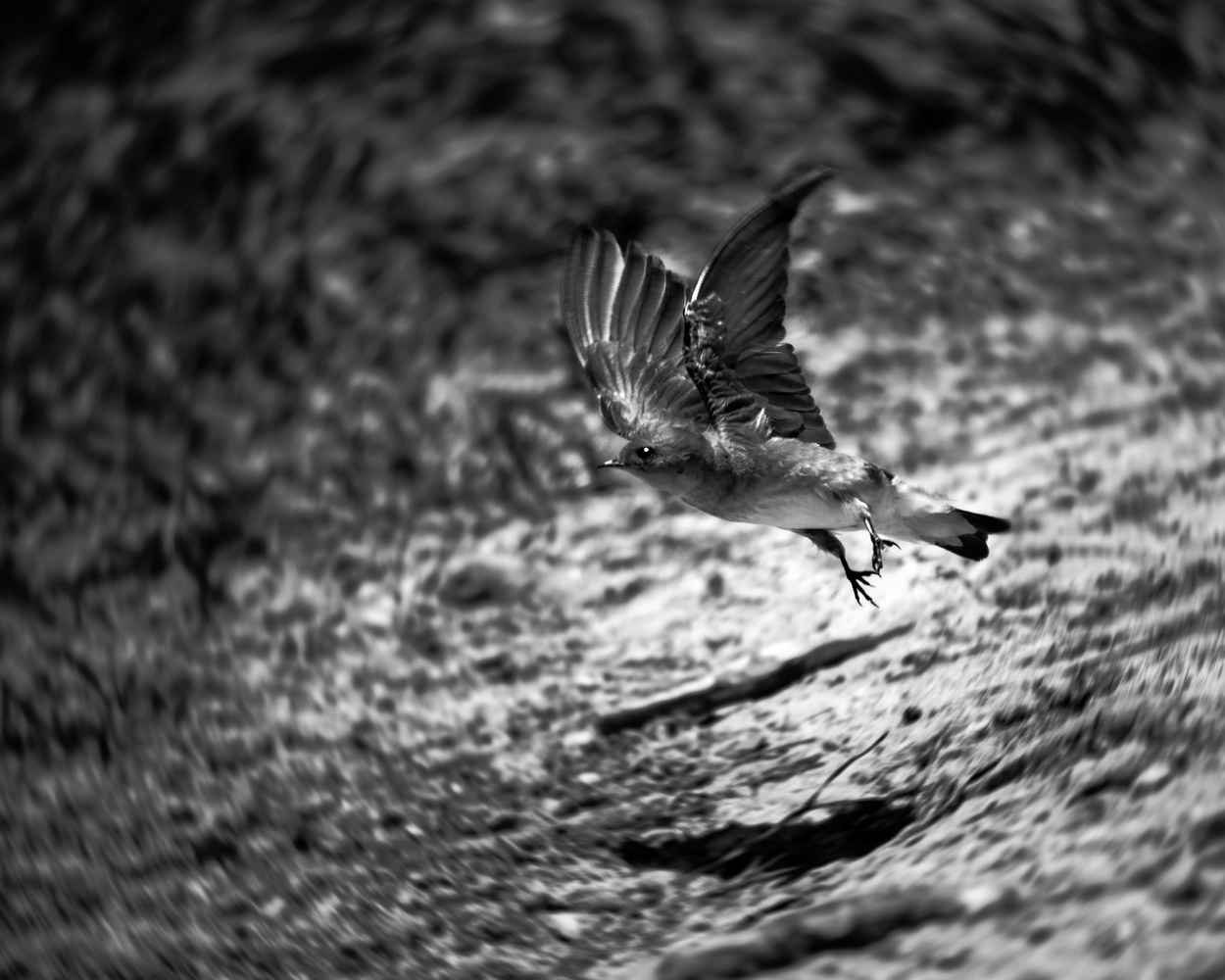 Warp Speed by James Mason