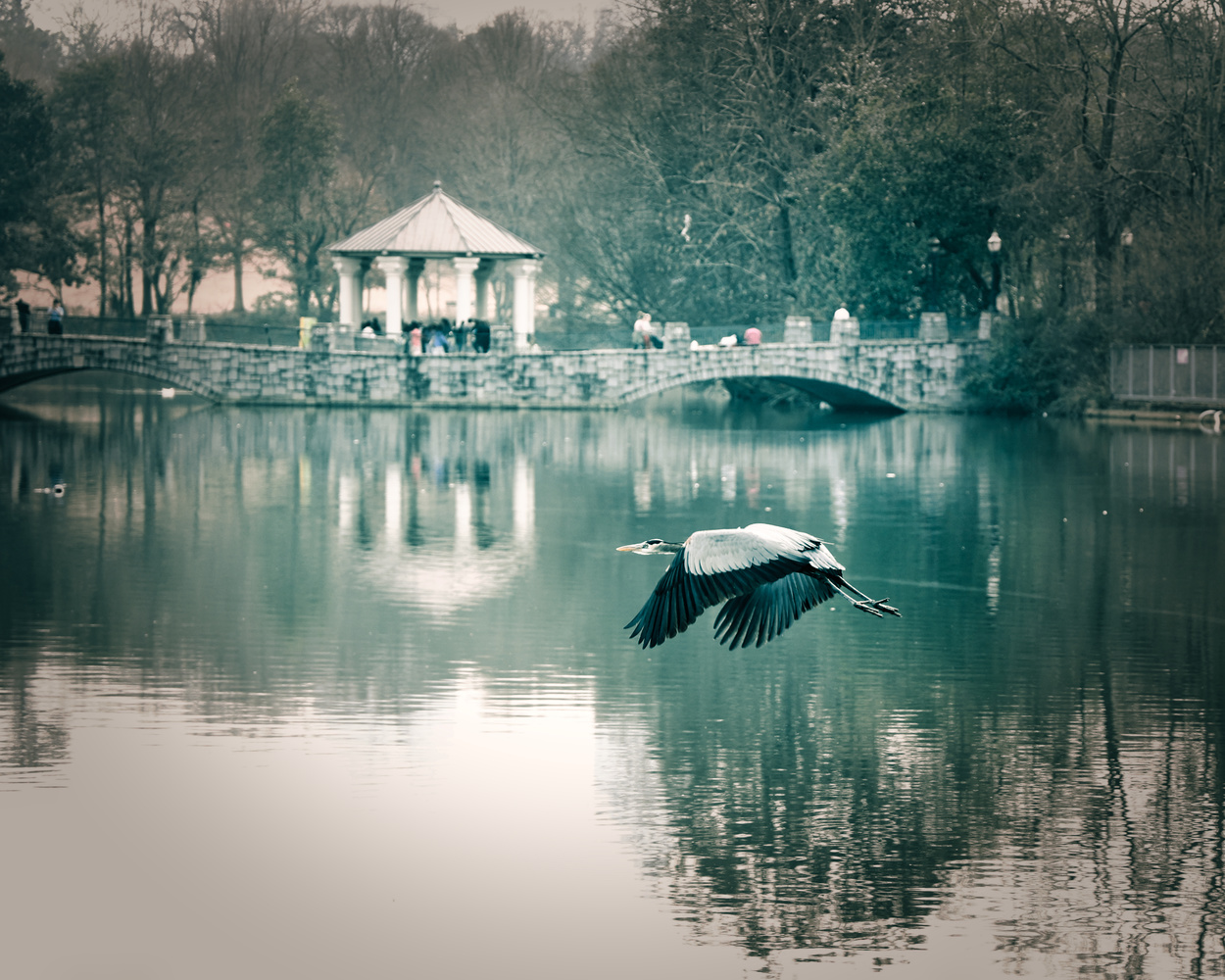 Winter Day @ Piedmont Park Atlanta by James Mason