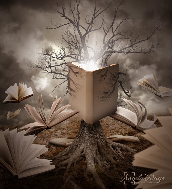 Old Tree Reading Story Book by Angela Waye