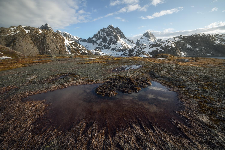 Spring in Lofoten by Tor-Ivar Næss