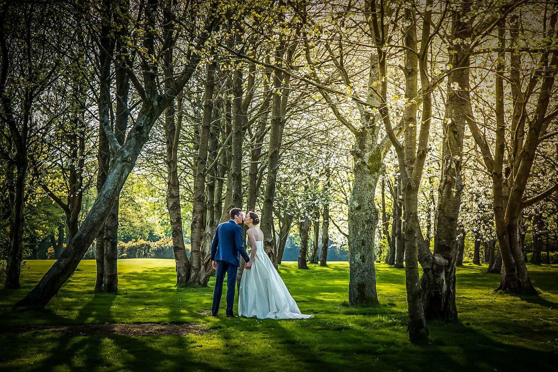 Woodland Walk by Steve Kentish