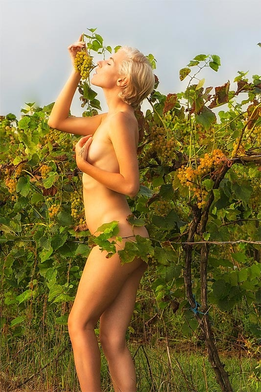 grape nypth by William Waterbury Jr.