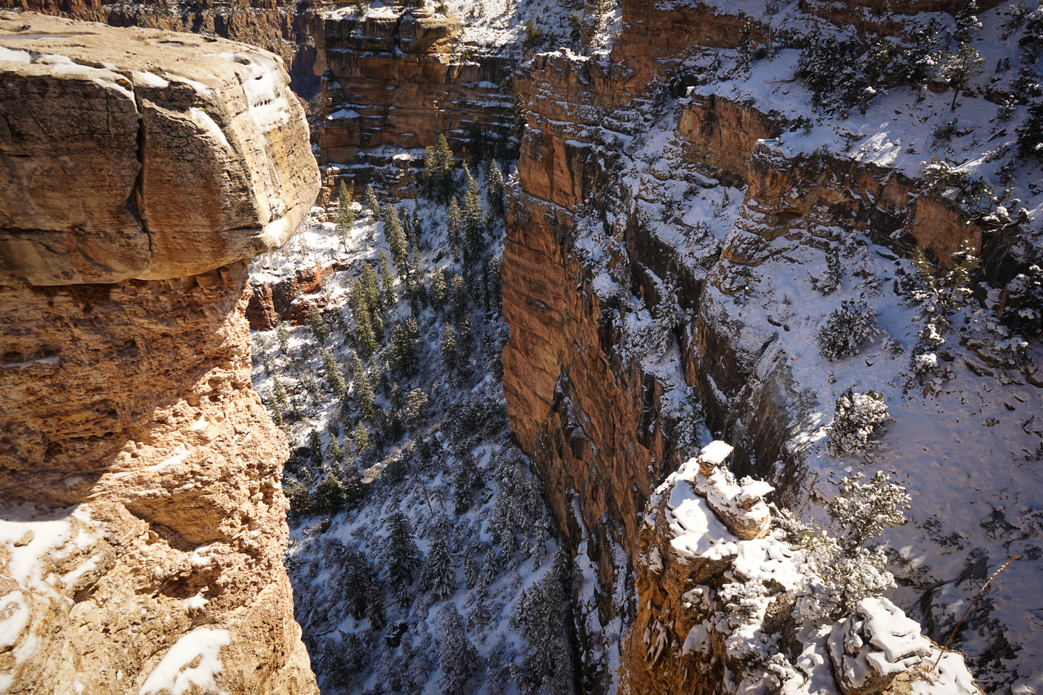 Cold Canyon by Denisa Susca