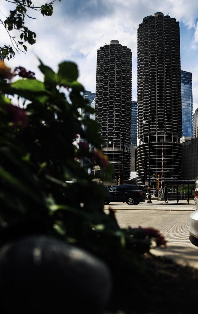 Chicago Buildings by Adam Hansen