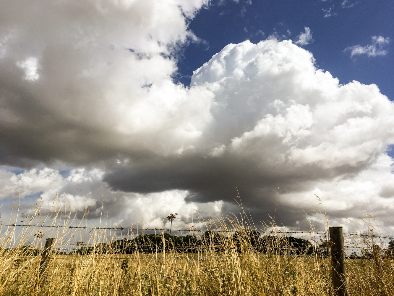 Dramatic Clouds by Jo Martin
