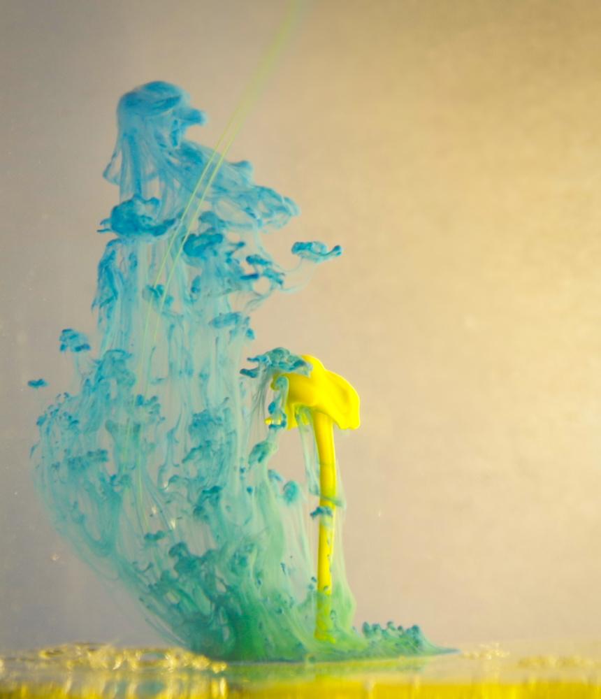 Sunny Shroom by Ruth Carll