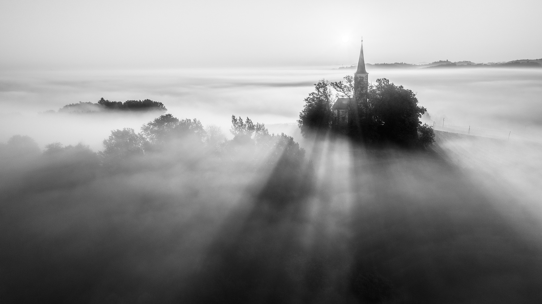 Foggy morning by Danijel Turnšek