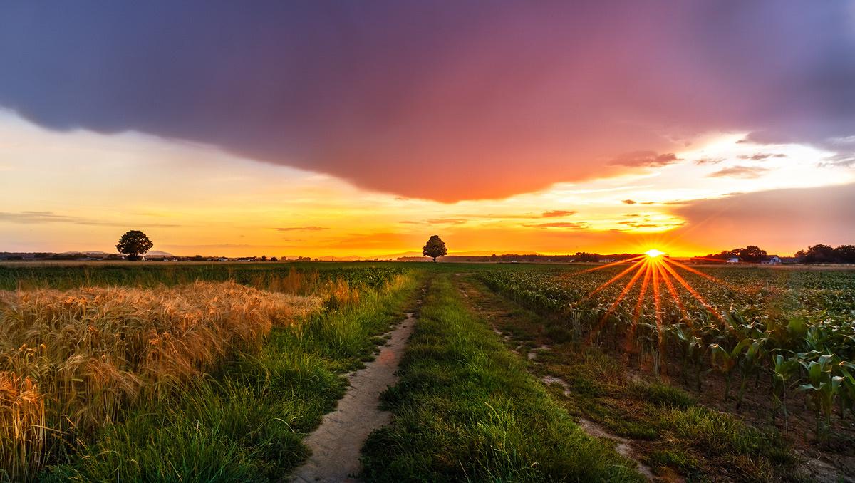 Wild sunset by Danijel Turnšek