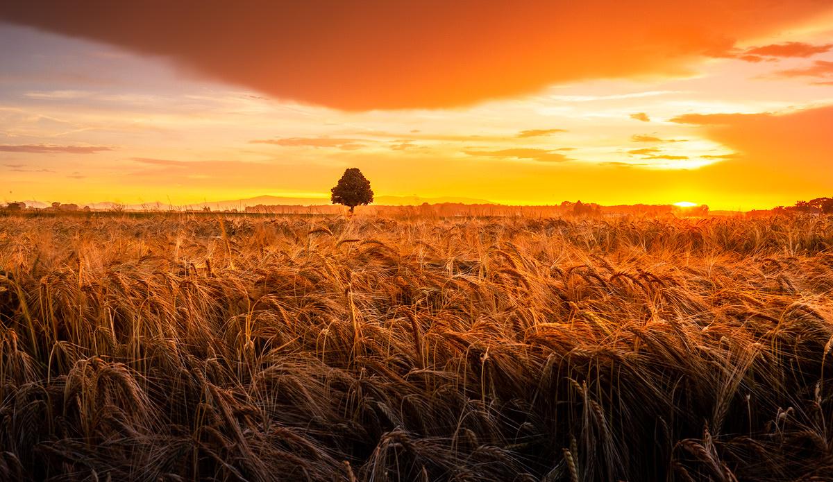 Golden hour by Danijel Turnšek
