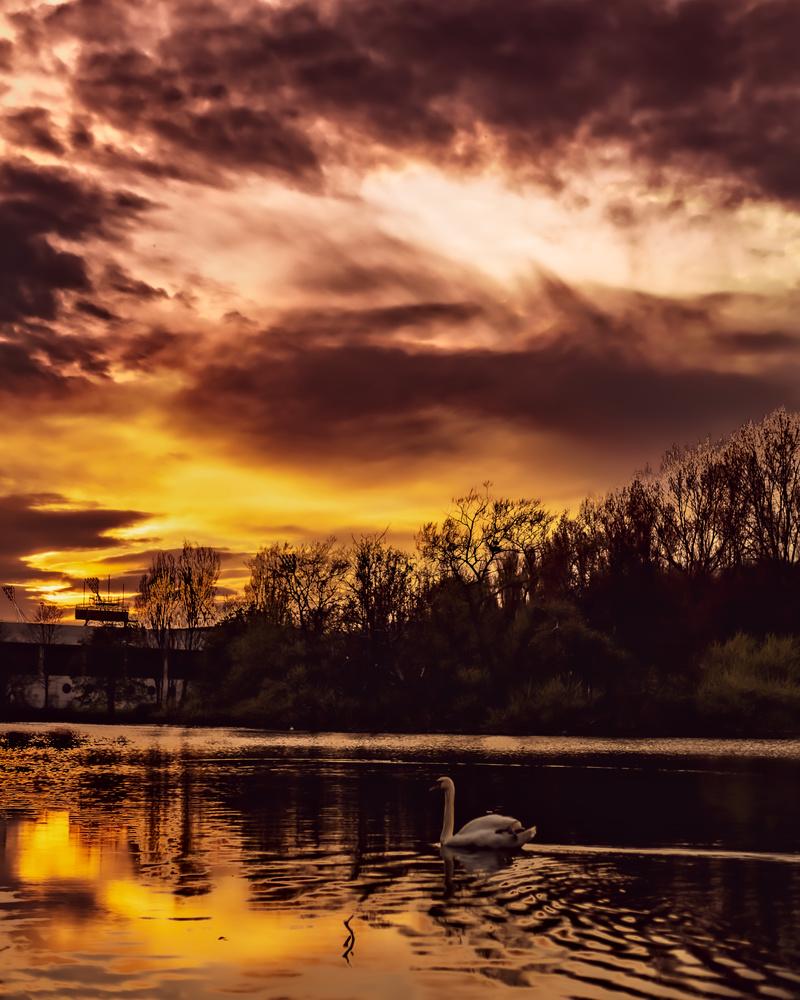 Sunset by Felix Strutzke