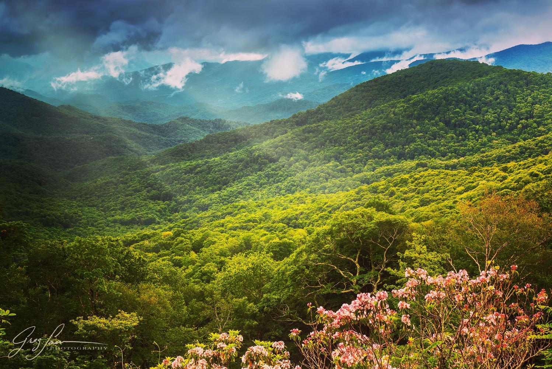 Blue Ridge Beauty by Greg Sarver
