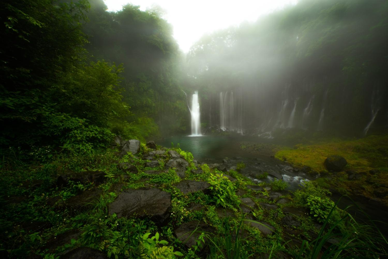 Foggy fall by Masataka Inada