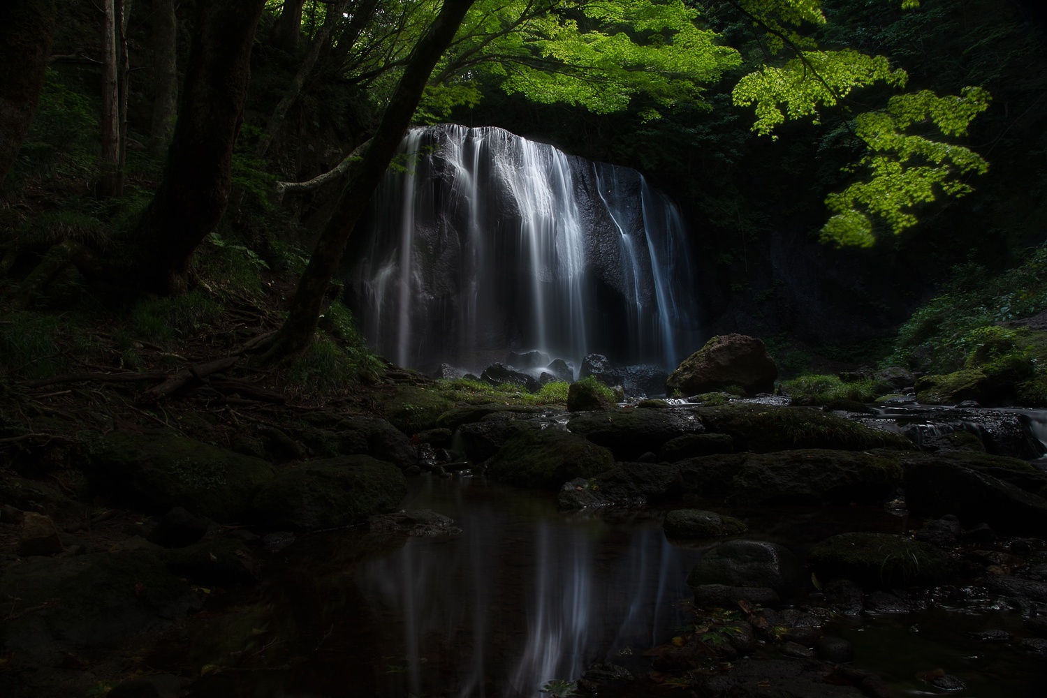 Waterfall by Masataka Inada