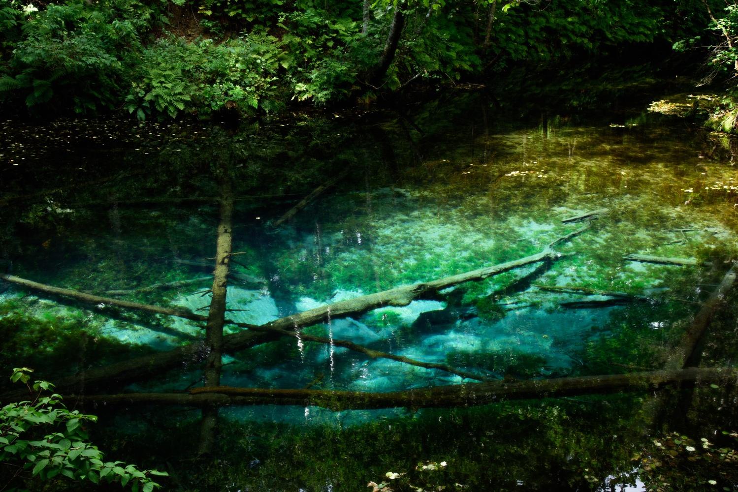 Kaminoko pond by Masataka Inada