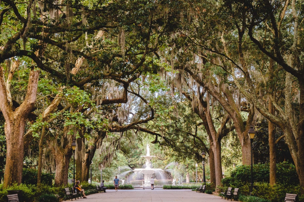 Forsyth Park by Andrew Yianne