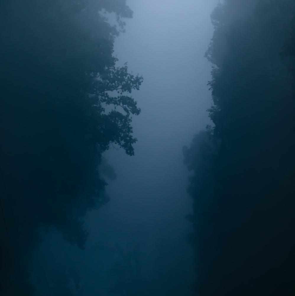 The Narrow Path by David Perman