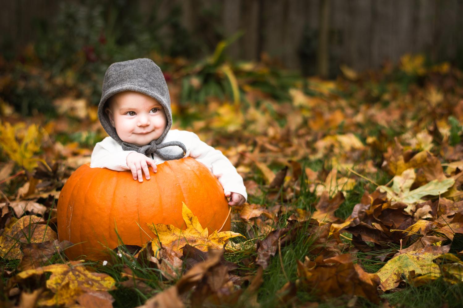 Pumpkin by Zach Deets