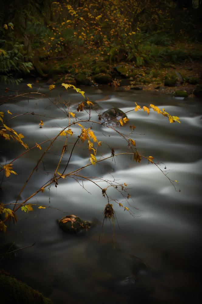 Clear Creek by Zach Deets