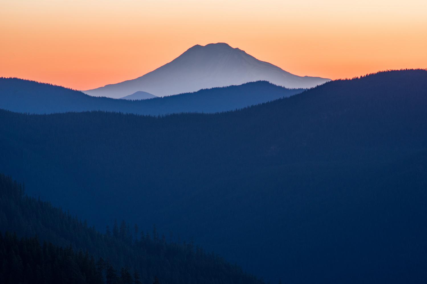Morning Light by Zach Deets