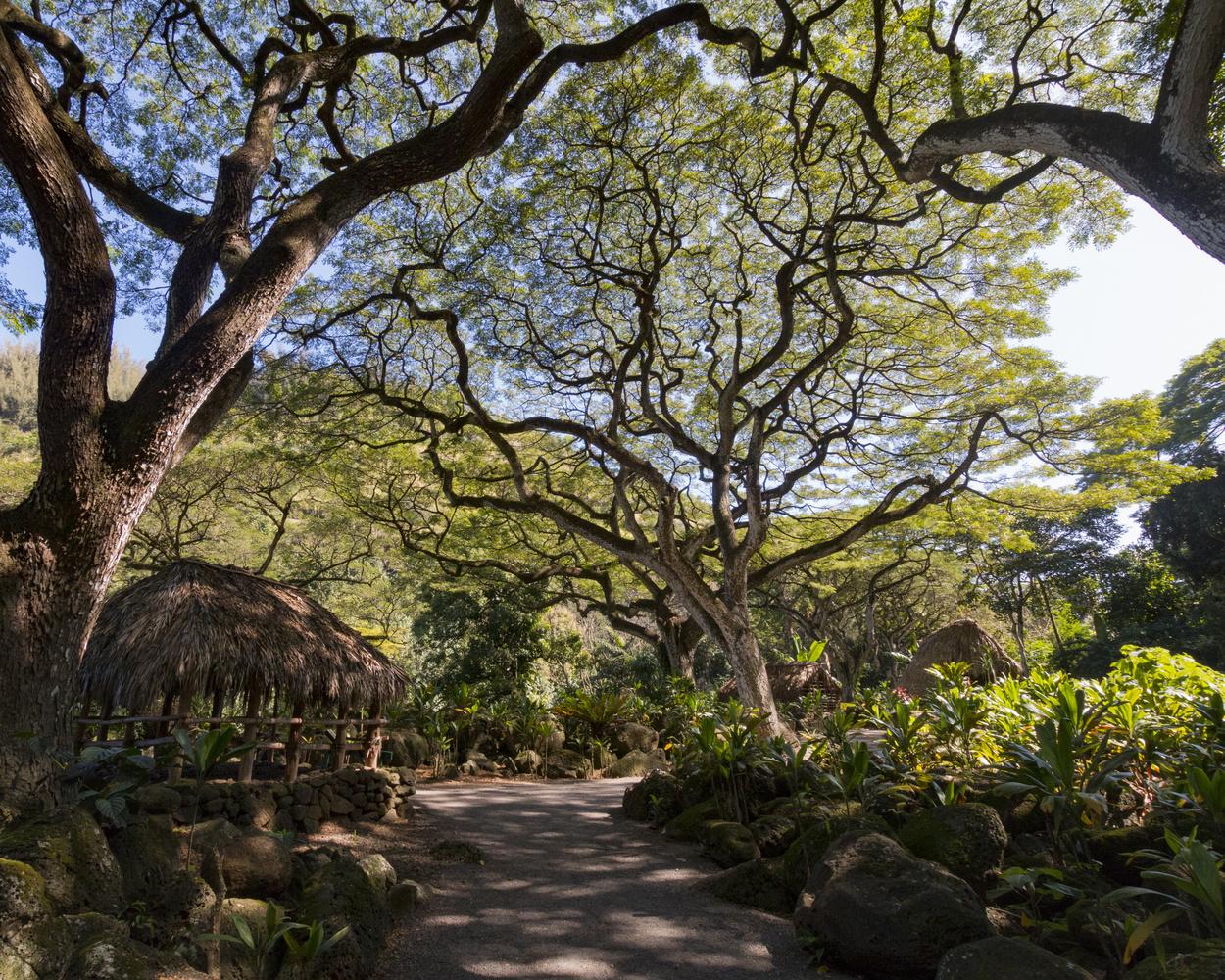Ancient Hawaiian village by Eric DuBois