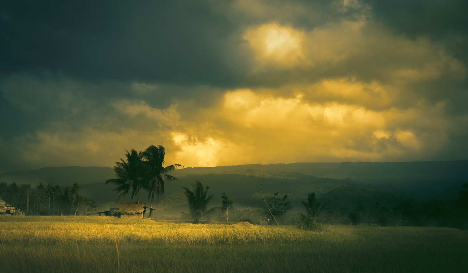 Home of a Farmer by Art Estole