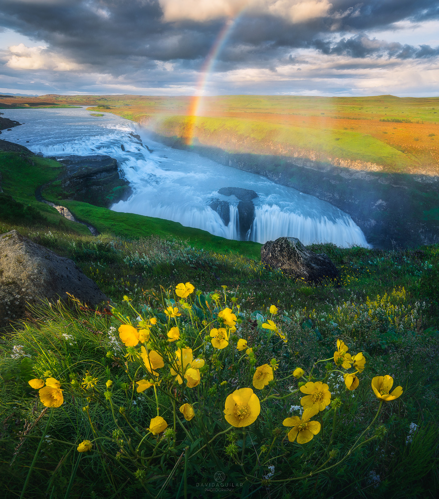 Tones of Heaven by David Aguilar