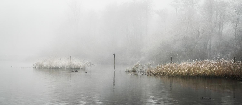 Flevoland by teun van dijk