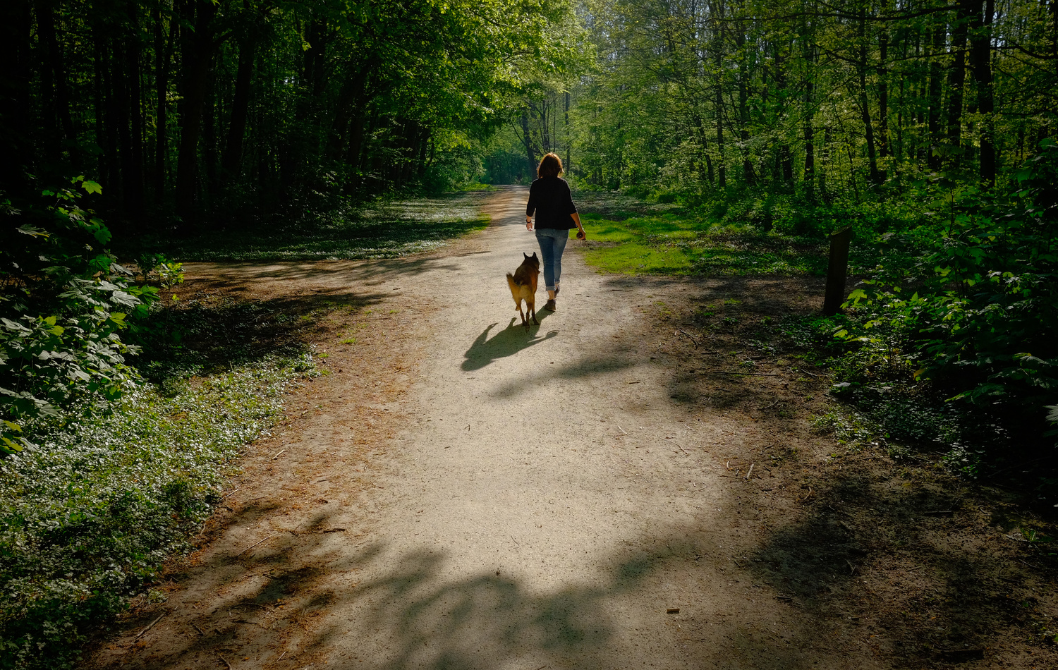 Walking the Dog with Easter by teun van dijk