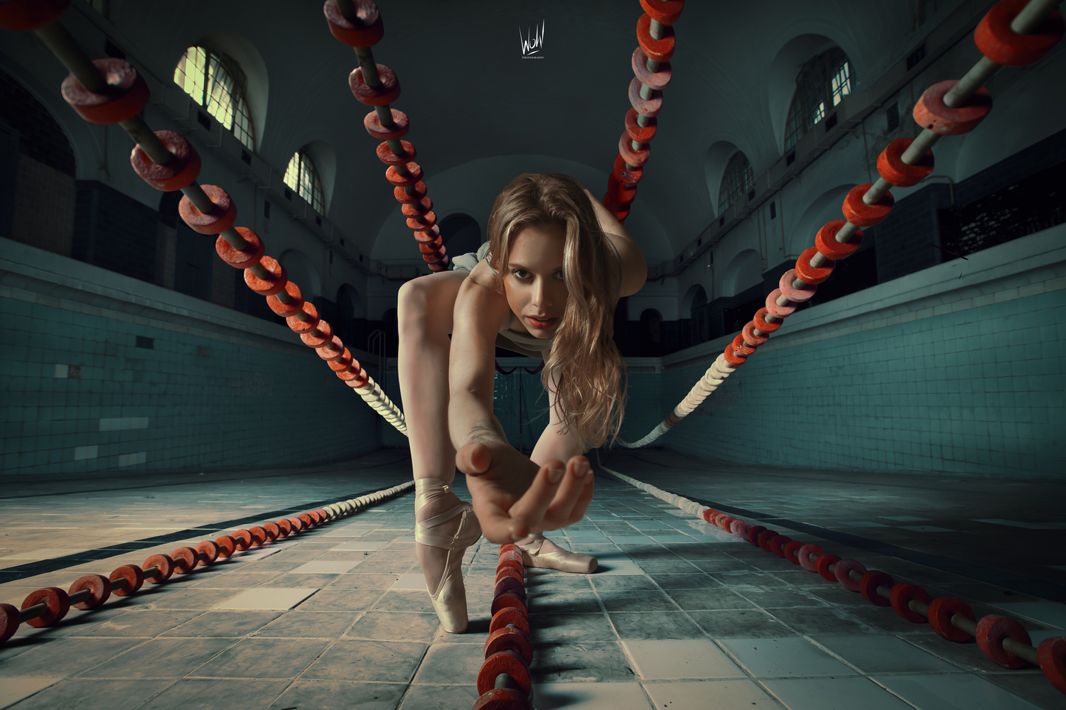 Dive by Thomas Wohl