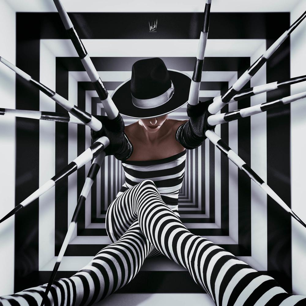 Virtual Prison by Thomas Wohl