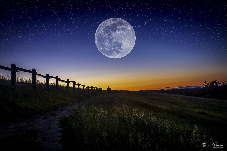 San Jose Moon by Thane Phelan