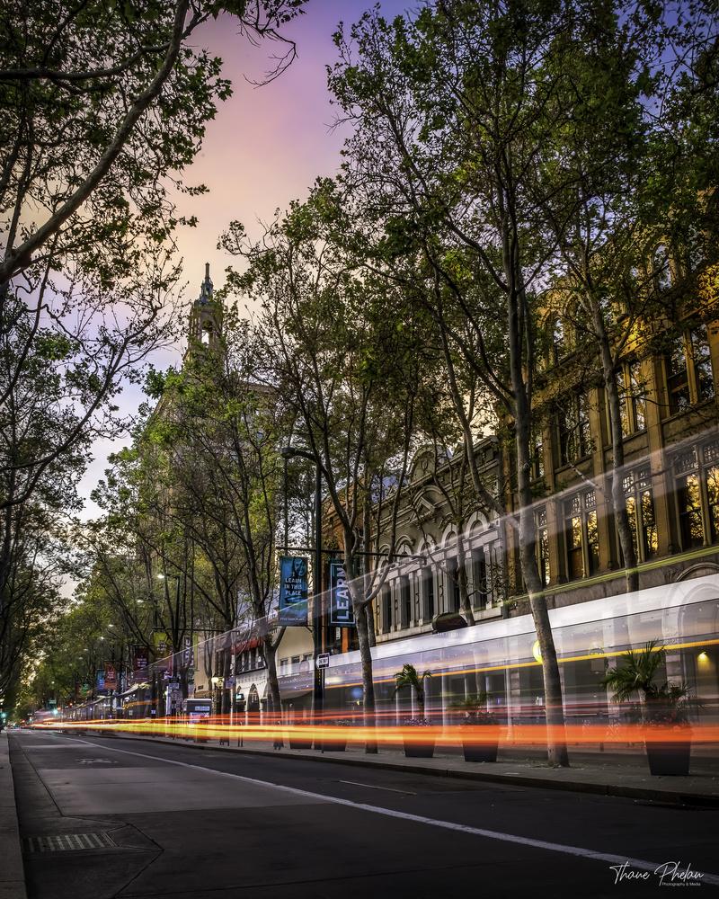 Streets of San Jose by Thane Phelan