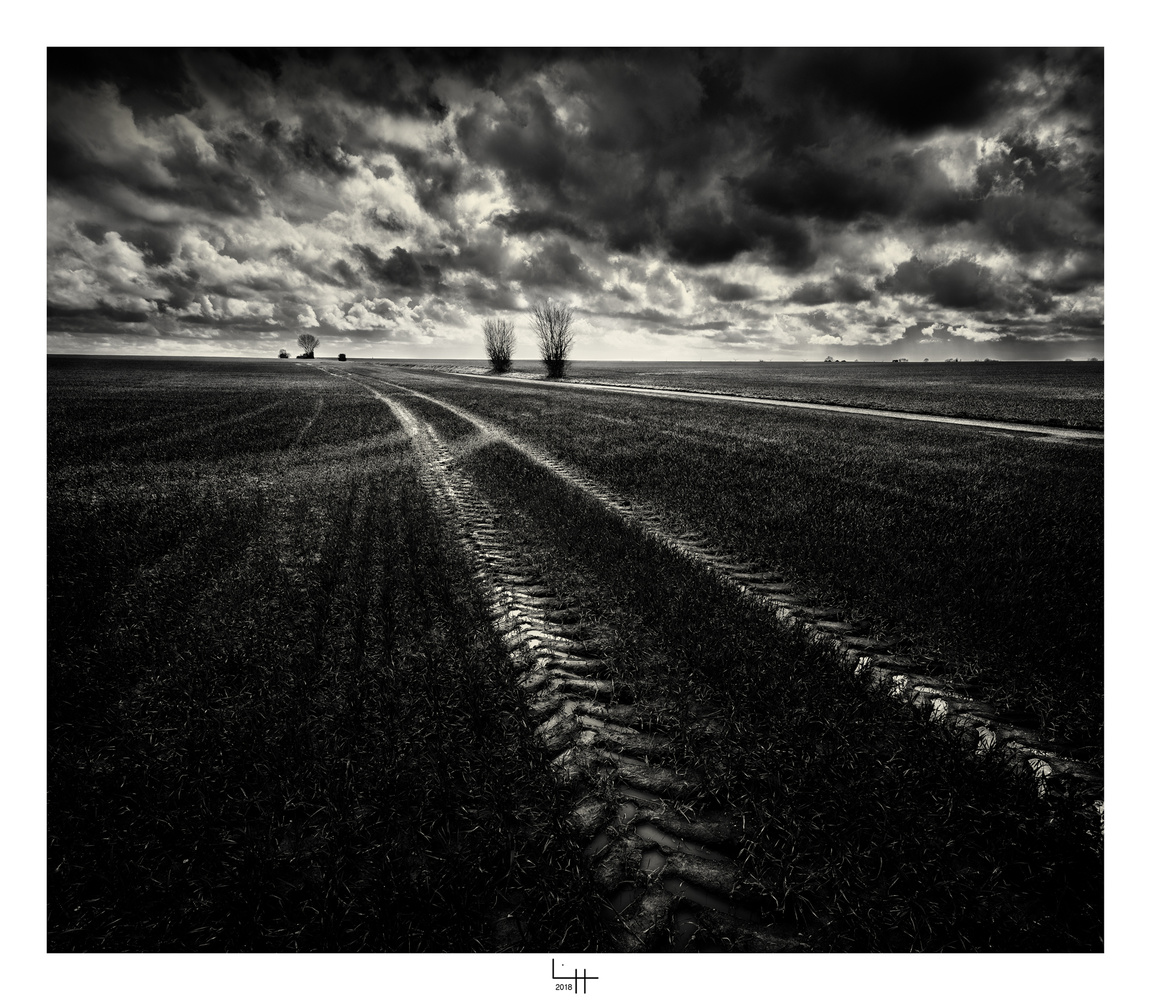 Traces by Lionel HUG