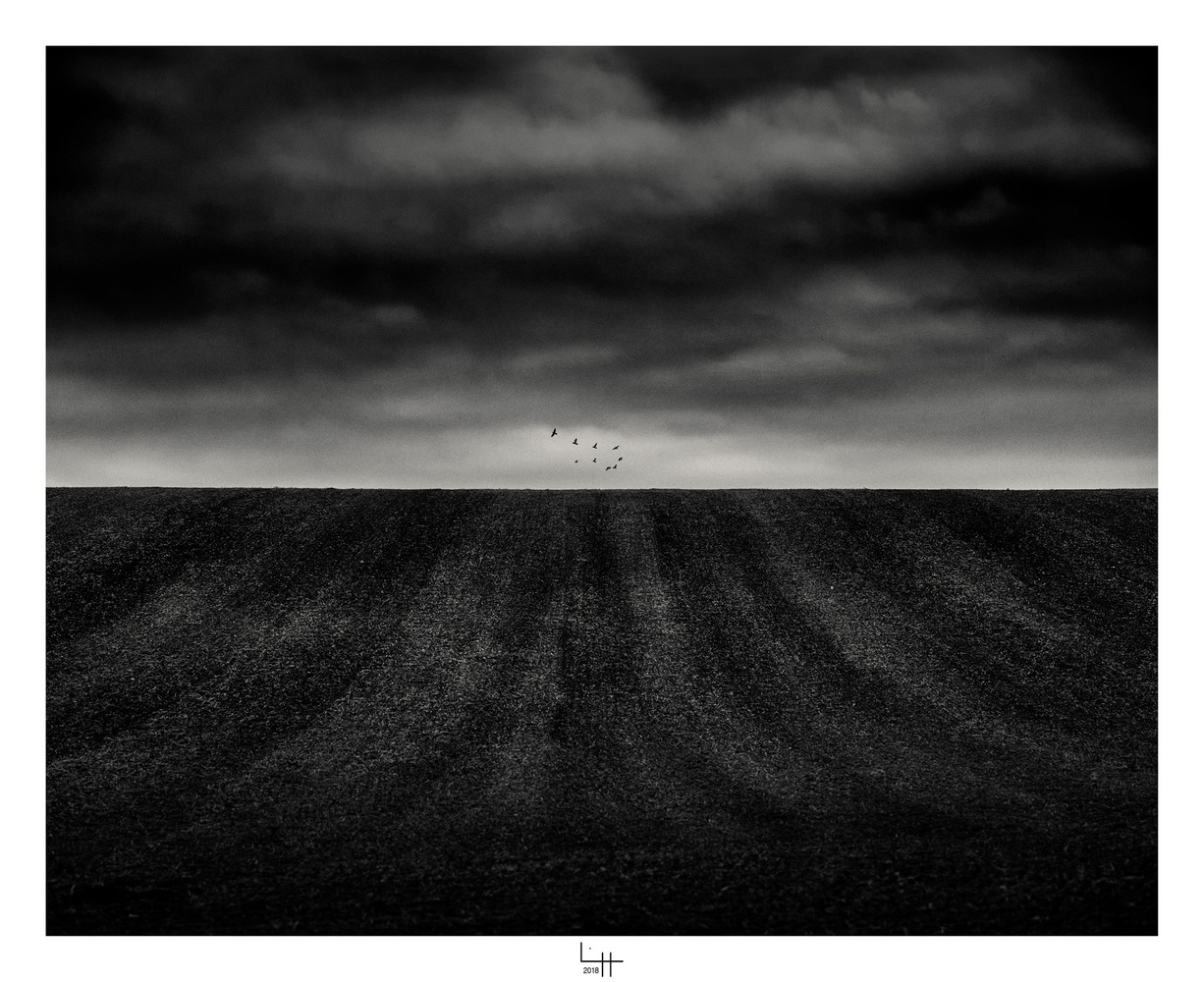 Vols de nuit by Lionel HUG